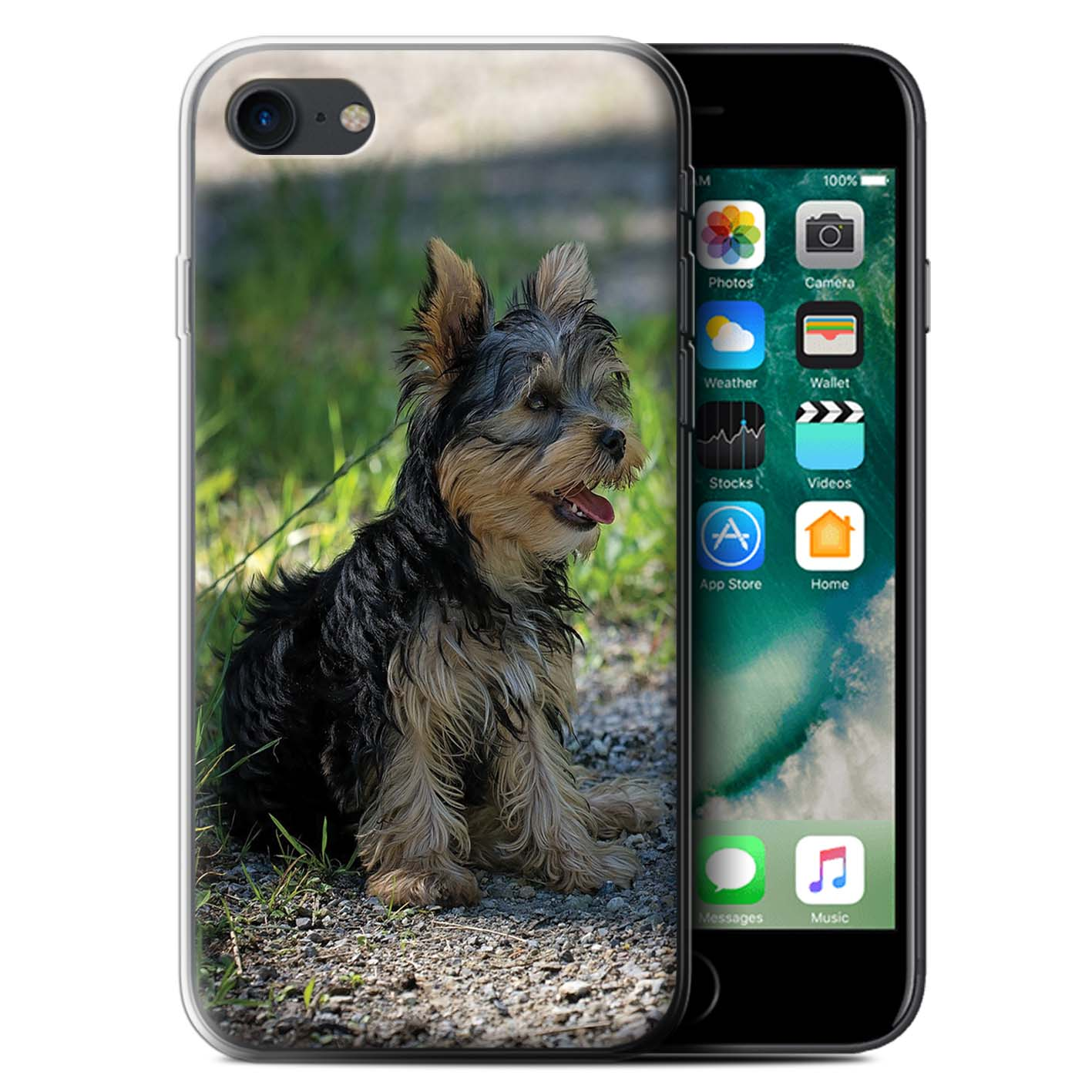 Gel-TPU-Case-for-Apple-iPhone-7-Popular-Dog-Canine-Breeds thumbnail 20